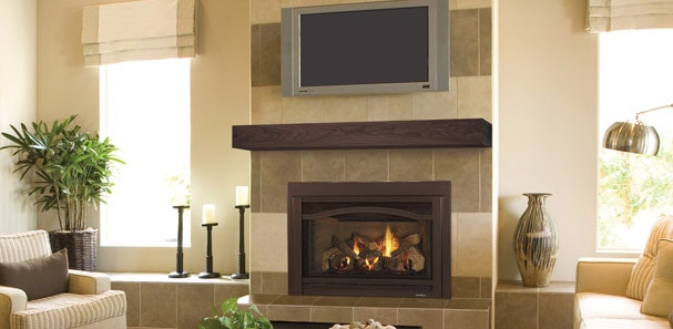 Check Out This Indoor Outdoor Fireplace Heat Glo