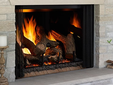 Phoenix TrueView Gas Fireplace